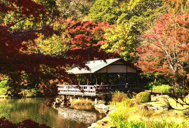 お出かけレポート東山動植物園